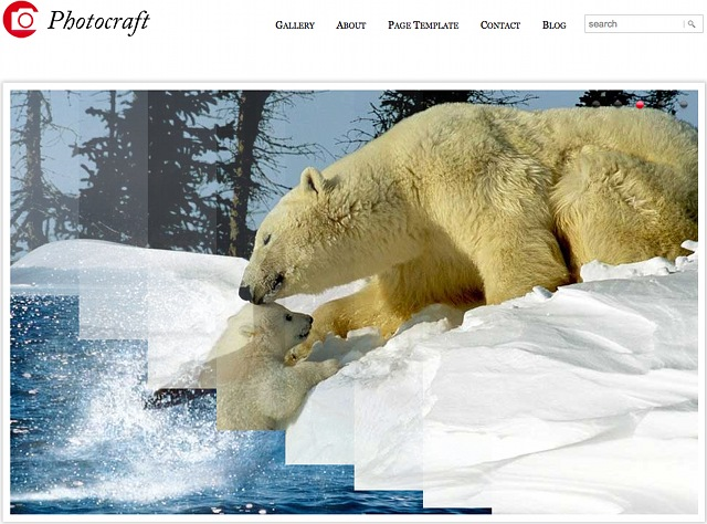 WordPress Galerie Theme - Photocraft Templatic