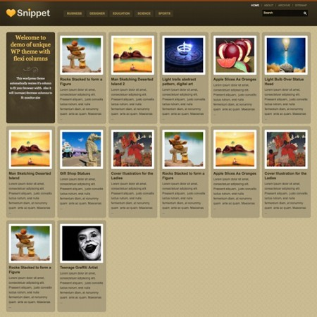 Templatic Snippet WordPress Grid Theme
